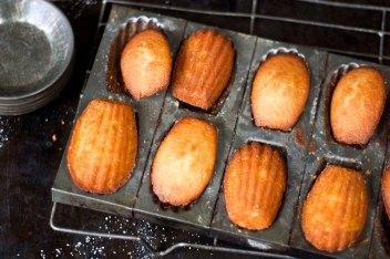 ORANGE BLOSSOM FRENCH MADELEINES